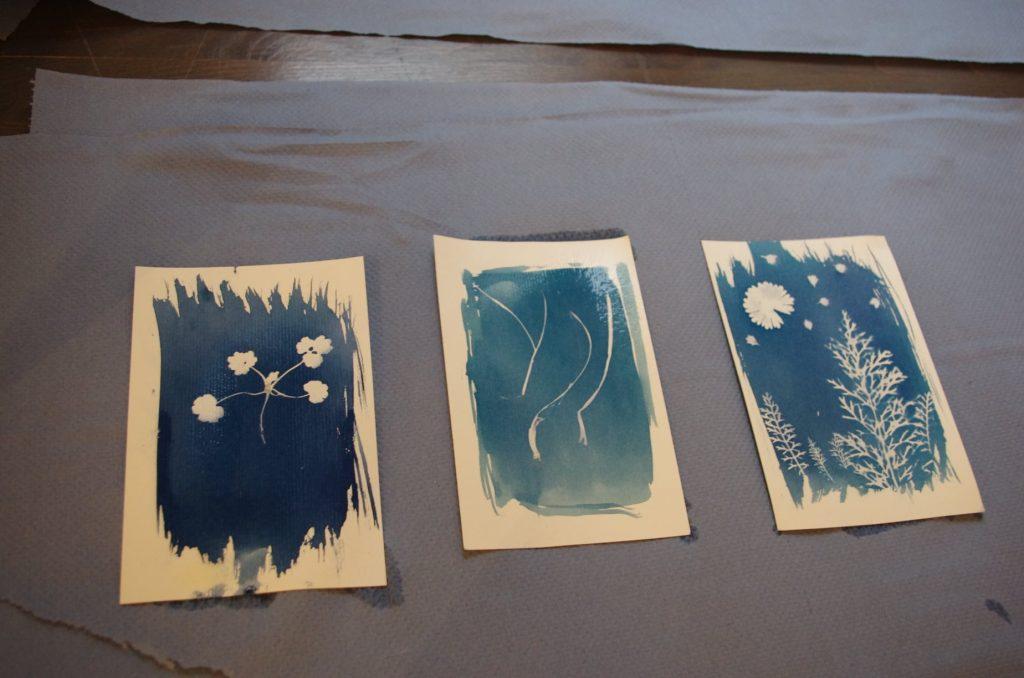 three original photographs made in cyanotype technique.