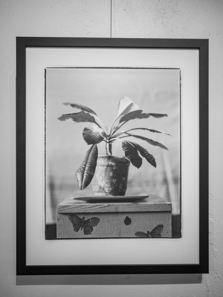 original photography work made by Gintas Kavoliūnas. Salt print.